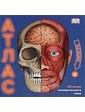 АСТ Ганери А.. 3D атлас человеческого тела. Книга-панорама